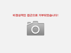 쉐보레/대우 크루즈 1.6 LT